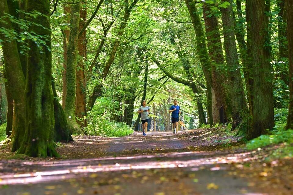Call of the West Trail Run Belleek woods trail