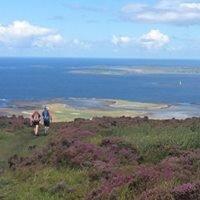 Call of the West Trail Run Strandhill Knocknarea