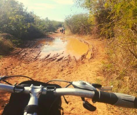 view over a big puddle from my bike on our cycling Cuba