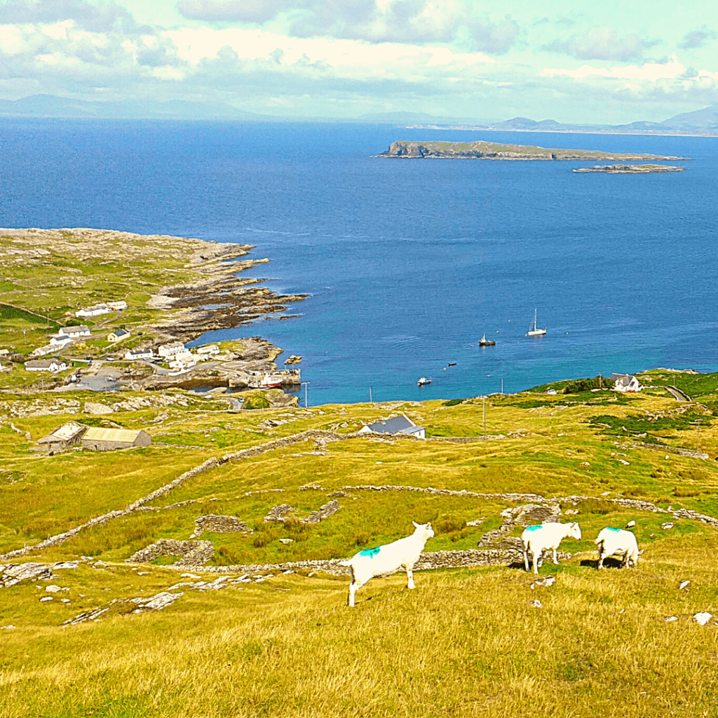 Plan a trip to explore the islands and cliffs of the emerald isle6