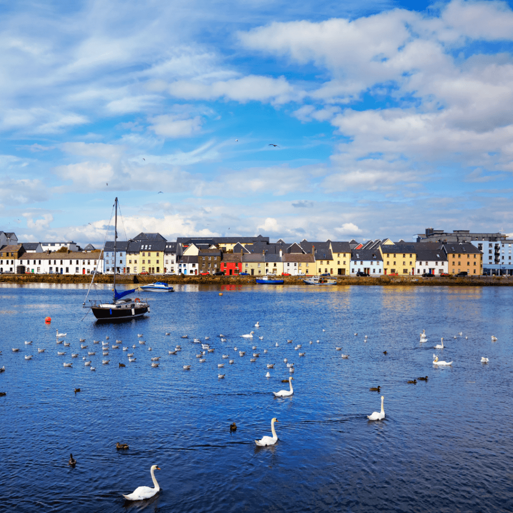 Vacation experiences from Northern Ireland to the Cliffs of Moher Galway