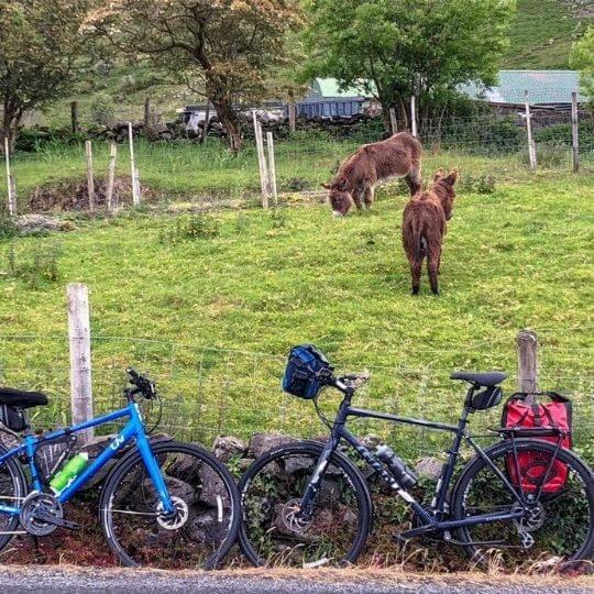 Cycling tours along the Wild Atlantic Way in Ireland (7)